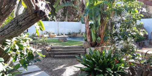 bmg-garden-4